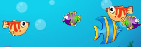 Pesque Com O Menino