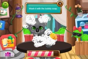 Pet Shop de Animais Selvagens - screenshot 1