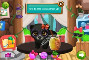 Pet Shop de Animais Selvagens - screenshot 3